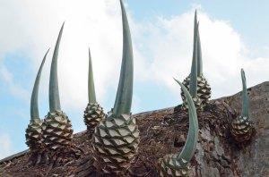 looks like pineapple, but not