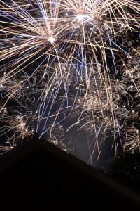 firework1s